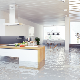 Water Damage Restoration Ventura